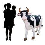 duża krowa