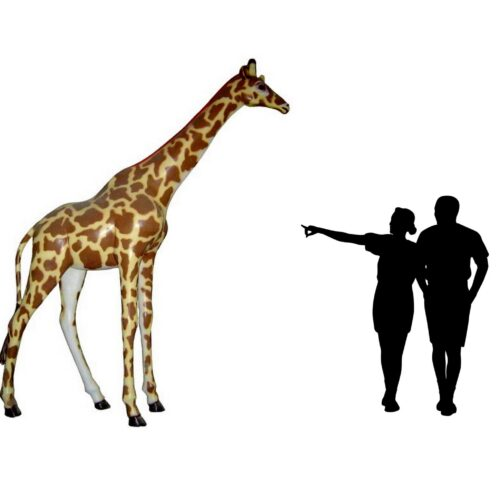 żyrafa naturalnej wielkości