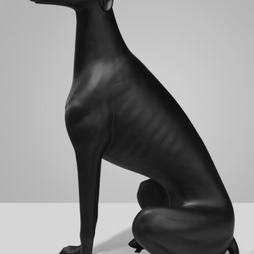 duż greyhound czarny mat profil